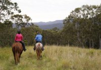 Numinbah Valley Adventure Trails