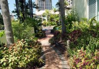 Surfers Paradise Apartment Accommodation